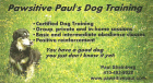 Pawsitive Paul's Dog Training, group and private lessons